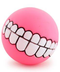 funny-dog-fetch-ball-2