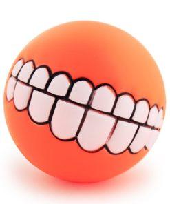 funny-dog-fetch-ball-4