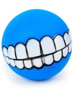 funny-dog-fetch-ball-5