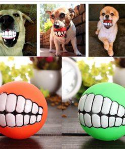funny-dog-fetch-ball-7